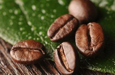 Why is organic coffee better than conventional coffee?